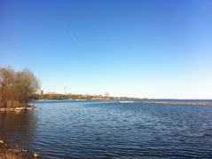 Spring in Toronto_10